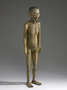 """""""The wooden male figure shows the points where needles should be applied to the skin and the meridians through which qi flows in the body.""""    - Science Museum"""