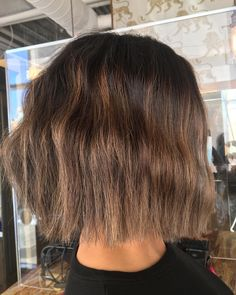 Trim/Brighten/blend and tone for this mane 😻😻 Hair by master stylist Claire at RedBloom Salon. Mane Hair, Hair Painting, Color Trends, Claire, Salons, Stylists, Hair Color, Lounges, Haircolor