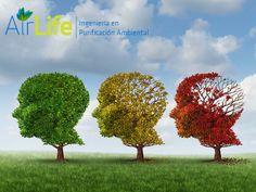 #airlife #aire #previsión #virus #hongos #bacterias #esporas #purificación  purificación de aire Airlife te dice. con base en datos de diversas investigaciones médicas y ambientales, la exposición continua a partículas contaminantes ultrafinas, tan pequeñas que pueden entrar por la nariz y alcanzar el cerebro vía los conductos nerviosos olfativos, podría ser un factor en la incidencia de casos de Alzheimer, Parkinson y otras formas de demencia. http://www.airlifeservice.com