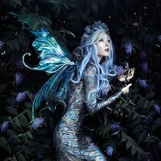 Fae by Bella Kotak - Photo 200566103 / 500px