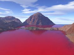 """vampires fantasy... lol   """"Blood Lake"""" in Texas. Water levels in the reservoir receded, which, mixed with the warm weather, helped lower oxygen levels. The low oxygen levels prompted a fish kill and spurred the growth of  bacteria called Chromatiaceae, which thrive in such conditions. Chromatiaceae are purplish in color, prompting the """"blood"""" red colors."""