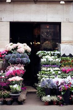 Favourite combination - stone, steel, glass, flowers | Shop front - florist - flowers - stone - black steel - glass