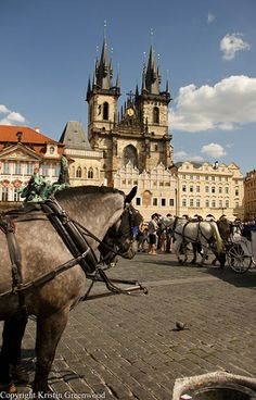 One of our fav. pics of Prague - The old town square with the Tyn Church  in the background
