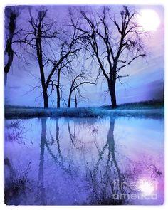 ✯ Night Sky...