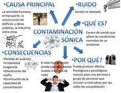 Christian Ochoa, Kids Education, Flute, Technology, Soft Hands, Words, Audio, Environmental Issues, Environment