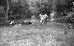 German paratroopers executing civilians on Crete for shooting at them during the battle, June 1941, part 2 of 7.