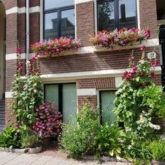 Amsterdam Street Style, Amsterdam Apartment, Narrow Garden, Green Facade, Garden Inspiration, Garden Ideas, Dream Garden, Rue, Beautiful Gardens