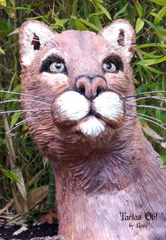 Florida Cougar (Animal Rights Collaboration) - Cake by Tartas Oh by Rosa Cat Cakes, Gravity Defying Cake, Edible Art, Animal Rights, Big Cats, Daily Inspiration, Reptiles, Collaboration, Sculpting