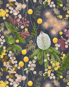 Bespoke botanical wallpaper design for @haymespaint Colour Library Vol 2 | COLLABORATE. Australian native motifs painted in Haymes palette  Available to order please email hi@louisejones.com.au x