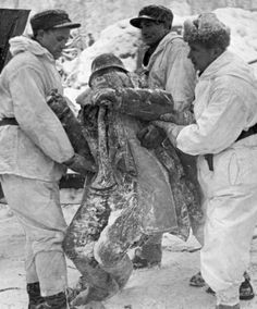 The frozen body of a Russian soldier is removed by Finnish troops, 1940.