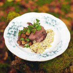 Gebakken hertenlende met risotto en hachee