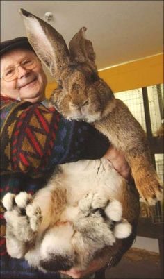 Either he is a tiny man or he caught the Easter bunny.