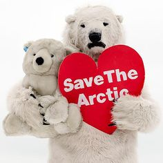 Join the movement so we can save the Arctic from oil drilling together. Save The Arctic, Power To The People, Global Warming, Climate Change, Conservation, Wildlife, Live Feed, Teddy Bear, Defenders
