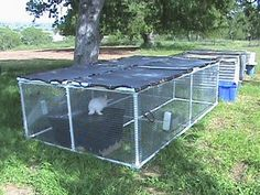 love the idea of the PVC rabbit run but this site is about raising 'meat' rabbits and how to cook them..