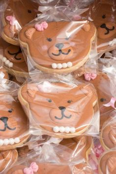 Teddy Bears picnic Birthday Party Ideas | Photo 3 of 51