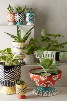 Decorate your home with these kitschy southwestern-styled garden pots