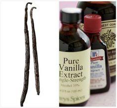 What's the Difference? Vanilla Extract, Vanilla Bean, Vanilla Paste | The Kitchn