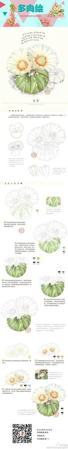 多肉手绘_Mowei图片专辑-堆糖... Wouldn't this make a cool cactus painted rock?!