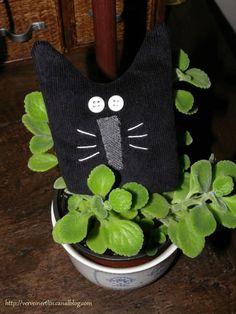 Des chats de sorcière pour Halloween