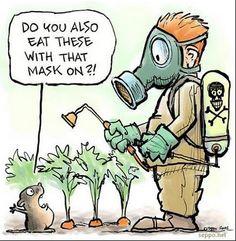 Those pesky pests