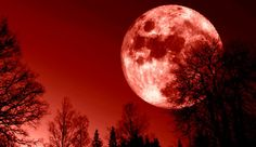 blood moons in 2014 2015 | Blood Moon Lunar Eclipse