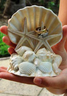 Beach Wedding ring 'pillow' (from wedding on Grand Bahama Island)