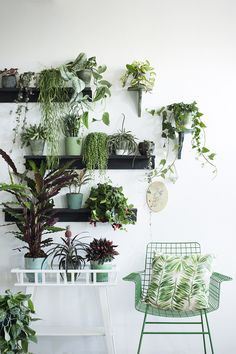 Jungle Fever - Libelle Living special. Concept&Styling: Anke Helmich/Studio StyleCookie.nl, Fotografie: Rolinda Windhorst #green #jungle #planten #botanical