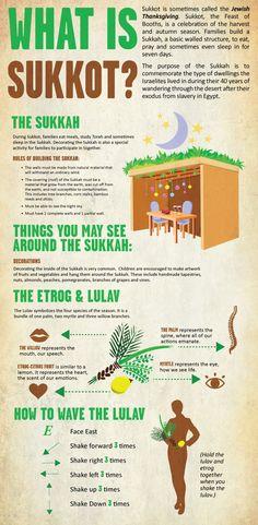 Sukkot Infographic