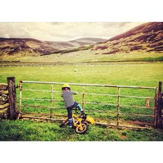 Fascination. #outforawalk #instagood #instalight #countryside #scottishborders #scotland #touserv #chasingessence #childrenofinstagram #kidscorner #cutebike #nature #greenery #ig_kids #igmasters