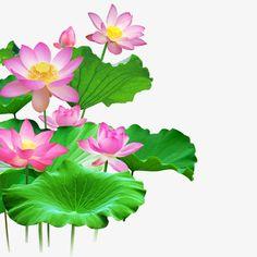 Lotus Kunst, Lotus Art, Flower Tattoo Designs, Flower Designs, Lotus Flower Pictures, Youtube Banner Backgrounds, Watercolor Lotus, Lotus Leaves, Paper Leaves