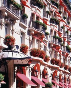Hotel Plaza Athenee in Paris! Can't wait to go to Paris Paris Hotels, Hanoi, Beautiful Hotels, Beautiful Places, Amazing Hotels, Elysee Palace, Plaza Athenee Paris, Places To Travel, Places To Go