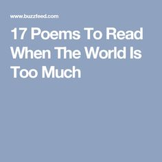 17 Poems To Read When The World Is Too Much