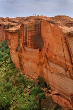 Kings Canyon, Northern Territory, Australia - Ancient sandstone walls and giant…