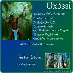 Oxóssi – Orixá da Expansão – Casa de Miguel