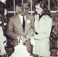 Bogey & Bacall tie the knot! 70 years ago Today In Cat History, May 21, 1945. The couple is pictured here at their reception, held at the home of famed badger novelist and organic farming visionary, Louis Bromfield.