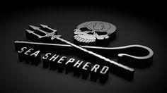 Save our ocean wildlife Sea Shepherd, Full Hd Wallpaper, Wallpaper Downloads, Save Our Oceans, Conservation, Whale, Desktop Backgrounds, Revolution, Tv Series