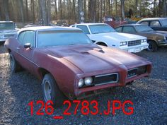 classic cars rotting  | Classic Car For sale 1968 (or 69) GTO