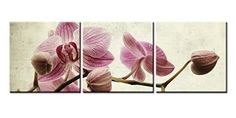 Canvas Print Wall Art Painting For Home Decor Tropical Pink Butterfly Orchid Flowers With Branch Blooming Isolated On White Vintage Background Floral Phalaenopsis 3 Pieces Panel Paintings Modern Giclee Stretched And Framed Artwork The Picture For Living Room Decoration Flower Pictures Photo Prints On Canvas So Crazy Art http://www.amazon.com/dp/B00ZR57ZIS/ref=cm_sw_r_pi_dp_WtXIwb0JJ9SK4