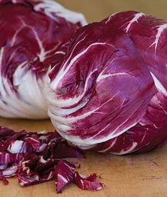 VLR) VERONA RED Radicchio~Seeds!~~~~Nice Sized Chicory!!