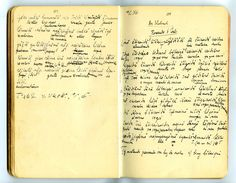 Notizbuch von Konrad Theodor Preuss, Heft 1, Seite 53