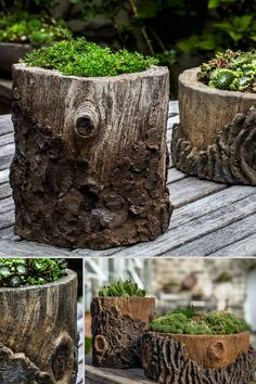 Beautiful tree trunk planter. I love the natural look. The perfect outdoor flower planter. #ad #trunkplanter #flowerpot #planter #log #treetrunk #homedecor #outdoor