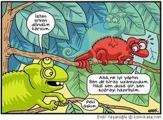 Erdil Yasaroglu...