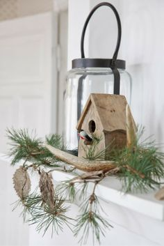 A bird house is right for nearly everything....