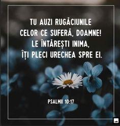 God Loves Me, My Love, Forget