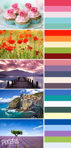 Beautiful color palettes inspired by wall murals from PIXERS