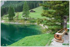 https://flic.kr/p/d4vfZd | Verde Austria | Annaberg - Salisburgo (Austria)