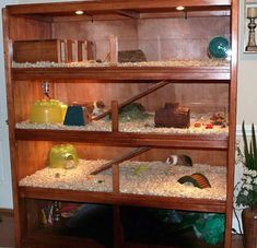 Make your guinea pig homes. | DIY guinea pig cage ideas.