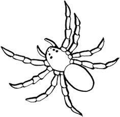 Spider Web And Spider Coloring Page | Cute Spider | Pinterest ...