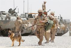 Canadian soldiers walk with their dog as they arrive at a base near the village of Nakhonay in Panjwai district, southern Afghanistan, June 7, 2010.