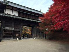 弘前城追手門の紅葉(autumn lsaves in Hirosaki Castle)